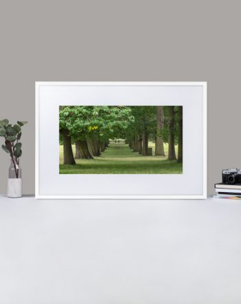 matte-paper-framed-poster-with-mat-cm-white-61x91-cm-lifestyle-1-615a19ffc1e58.jpg